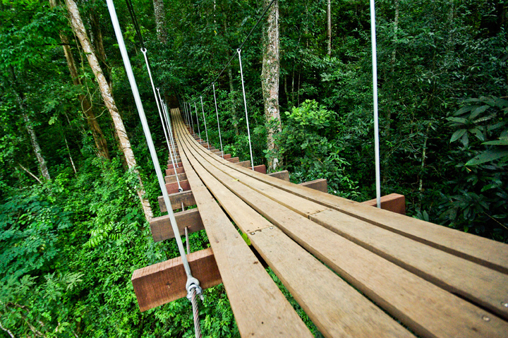 Combination Tour With Hanging Bridges