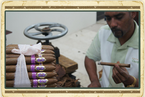 Island Routes Cigar Rolling Lesson with Transfer